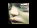 Rammstein - Spieluhr Instrumental