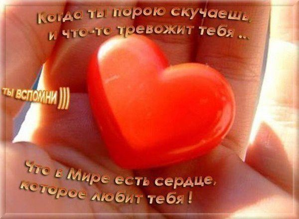Залька Шевхужева, Черкесск - фото №28
