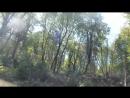 Железный Дровосек в Сочи удаляем деревья между парком и ЖК