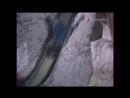 Гум-гам (1985). Катание с горки Репка