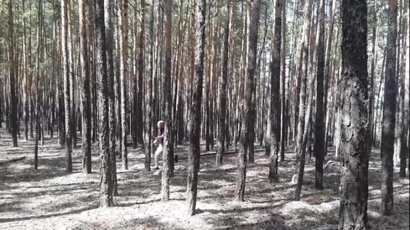 Снимаем художественный фильм ужасов Лесной маниак🎥🎬😱😁😁😁😁😁 бестселлер фильмгода канны лучшаяроль 😂 фильмужасов съёмки бо