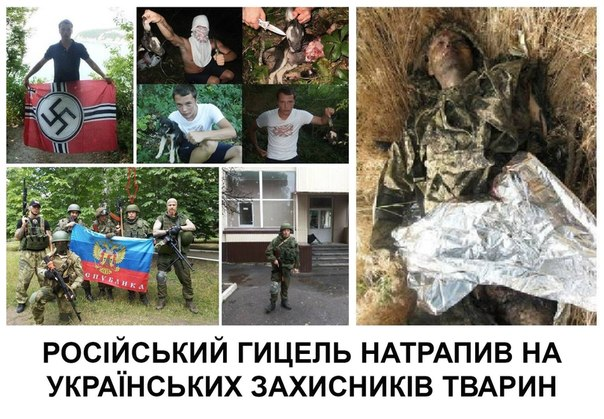 В Луганске партизаны уничтожили трех террористов, - российские СМИ - Цензор.НЕТ 2924