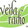 ВЕДА-РАДИО. vedaradio.fm | Торсунов О.Г.