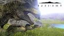 ИГРА ПРО ВЫЖИВАНИЕ Динозавров - The Isle [Стрим, Обзор, Выживание]