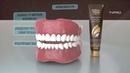 Зубная паста Глобал Тренд Компании LUXURY DEY LUXURY NIGHT