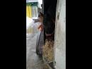 дима кормит регулярно постоянно а в конце маршрута порционно расход сена в день у лошади в дороге от 20кг