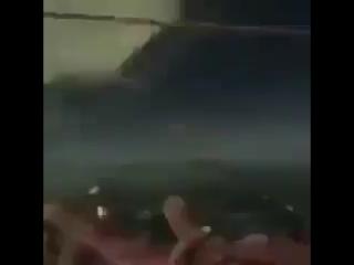 Котик увидел РР