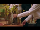 Полнометражный документальный фильм The Queens Green Planet