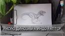 Как нарисовать динозавра ИндоРаптор карандашом поэтапно. Мир Юрского периода