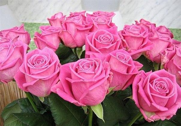 Душевные поздравление для женщины в день рождения красивые