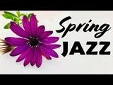 Relaxing Spring JAZZ For Work &amp Study - Smooth JAZZ &amp Bossa Nova Radio
