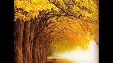 Secret Garden - Canzona ( Autumn Song )