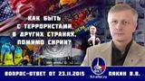 Валерий Пякин. Как быть с террористами в других странах, помимо Сирии