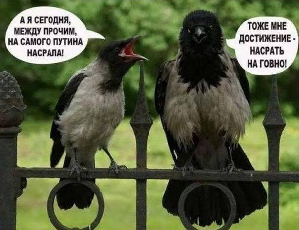 Спецслужбы РФ активизировались в Украине накануне майских праздников, - Турчинов - Цензор.НЕТ 2306