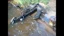Подъем якоря весом 500 кг с затонувшего теплохода