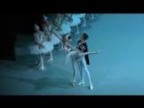 2.) 15_09_18 Andrea Lassakova debut in Swan Lake. Act II Odette Variation and coda