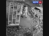 Пара жестоко избила девушку на детской площадке в Миассе