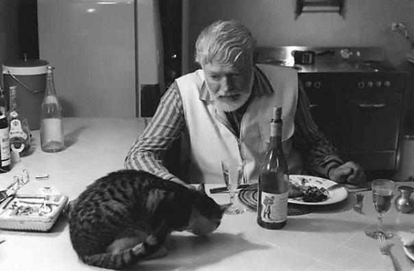 Эрнест Хемингуэй ужинает со своим котом  Большим Мальчиком Петтерсоном.