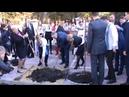 Тимошенко Ю.В.,посадила дерево, в місті Кам'янець-Подільському.