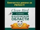 Клининговая компания Clean Bird