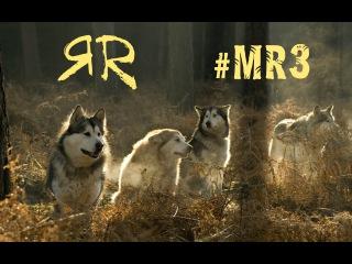 Моя Реальность | #MR3 | Они Рядом