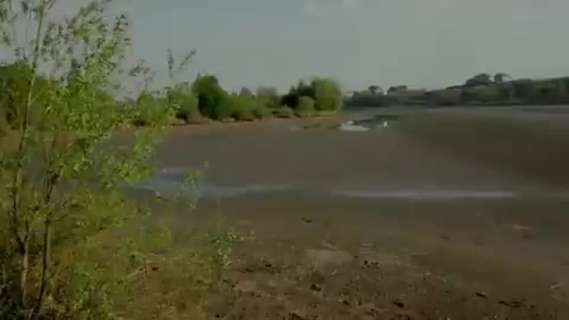 Волга мелеет её некогда полноводные и богатые рыбой притоки превращаются в лужи Но эта mp4
