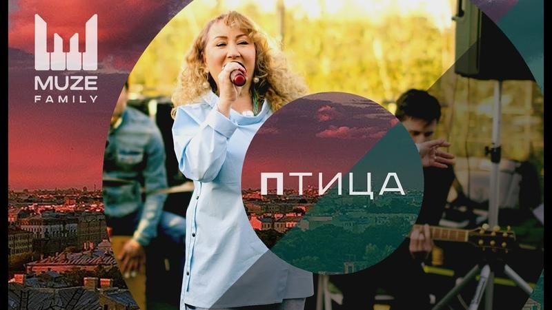 Птица (cover Ю. Михальчик) — Ненашева Галина (Acoustic Live 20.06.2018, Botanique)