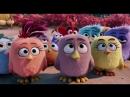Трогательный момент из мультфильма Angry Birds в кино
