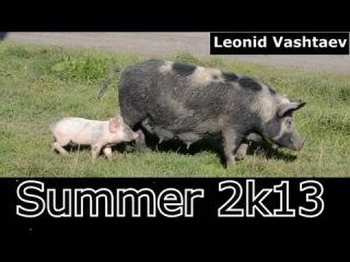 Summer 2k13