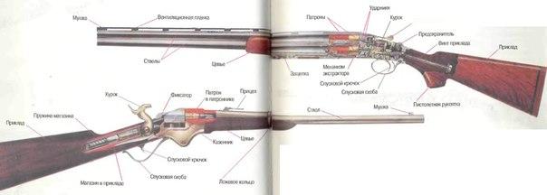 Устройство винтовки и