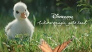 Disneyland Paris - The little duck