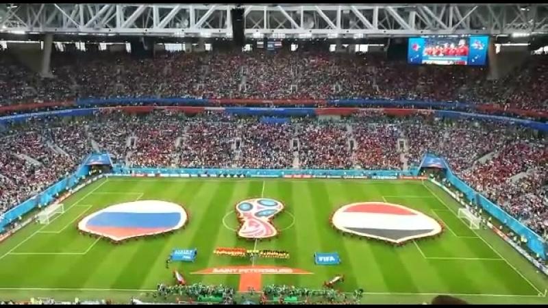 2018.06.19 - Россия - Египет (3:1), стадион Санкт-Петербург