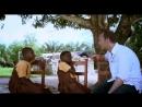 Авторы этого выпуска расскажут о проблеме эксплуатации детского труда на плантациях какао в Африке.