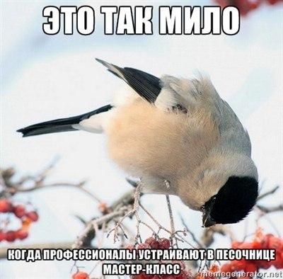 http://cs405329.userapi.com/v405329490/74af/p6P-pJvamnI.jpg