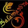 Salamandra59 Огненное Световое шоу