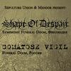 23 янв. 2015: Shape of Despair, Comatose Vigil