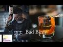 Amazing The Best Bartender Female skill -- Bad Birdy