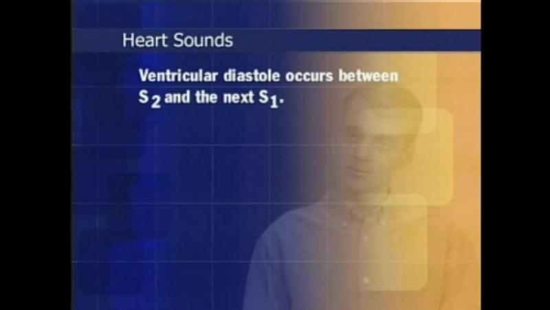 Исследование сердца и сосудов шеи