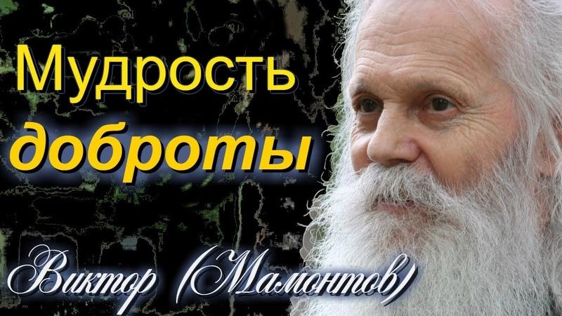 Мудрость ДОБРОТЫ архимандрит Виктор Мамонтов