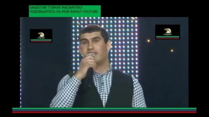 кумыкские песни алихан бамматов счастлив с тобой🌹🌹🌹👍Turkish Clips Alikhan B