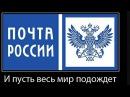 Жесть ужас Почта России весь лес в посылках