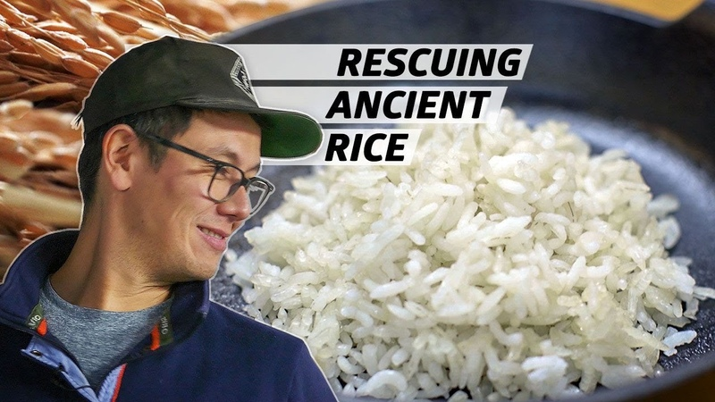 How Anson Mills Saved Ancient Grains of Rice From Extinction Rooted