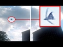 Did This Person Capture A Black Angel Above Pennsylvania ?