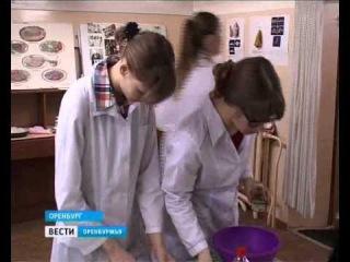 Немцы в городе. Фестиваль «Многогранная Германия» проходит в ОГУ