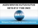 0815 8131 188 (IM3), Agen, Distributor Minyak Kutus Kutus Herbal Jakarta