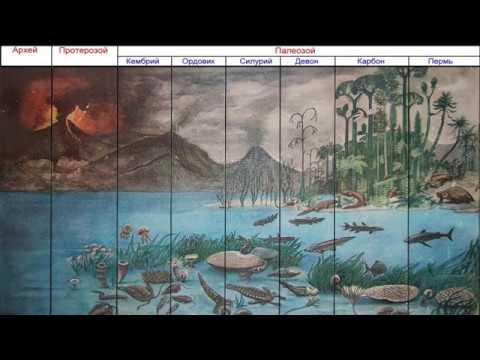 Ранняя история Земли рассказывает палеонтолог Андрей Журавлёв