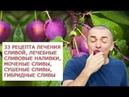 33 рецепта лечения сливой, лечебные сливовые наливки, целебные свойства гибридных слив