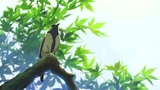 Twin Peaks - Makoto Shinkai