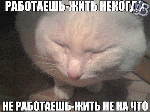 oYlYP2jvK4I.jpg