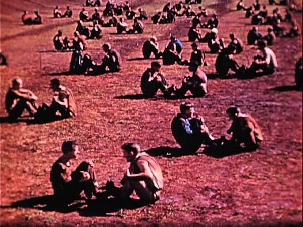 Школа Боевой подготовки Рэйнджеров Форт Шафтер Гавайи 1942 год